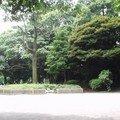 Tokyo parc ueno I