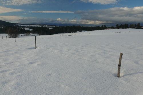2008 12 30 Neige dans un champ