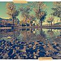 •● bulles d'automne