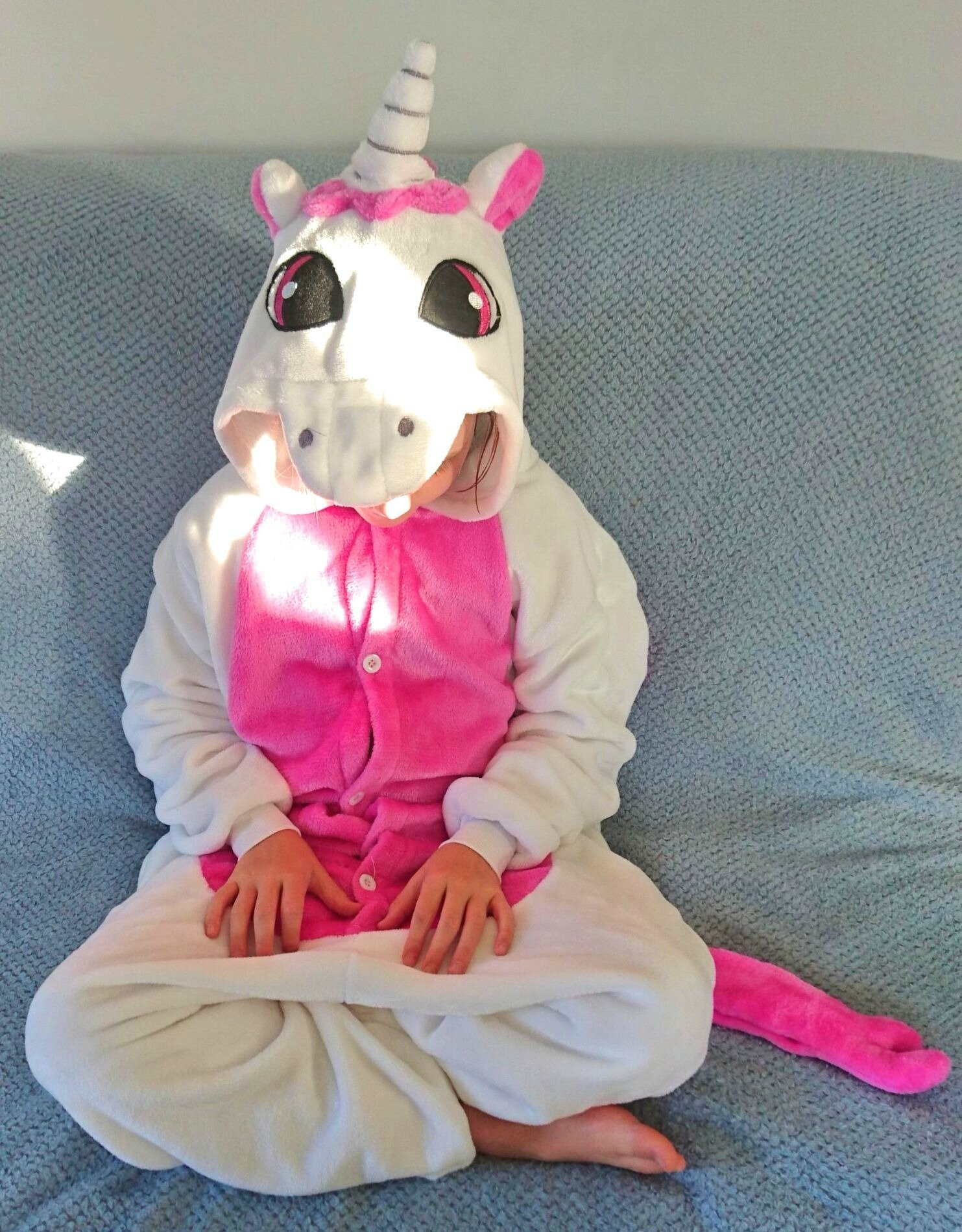J'ai adopté une licorne...