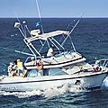 Pêche du marlin blanc au maroc