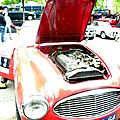2009-Annecy-Tulipes-Austin Healey-16