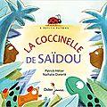 La coccinelle de saïdou / patrick hétier ;. ill. de nathalie dieterlé . - didier jeunesse, 2017 (a petits petons)