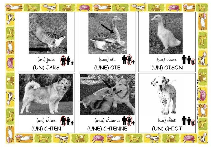 loto des animaux de la ferme planche 6