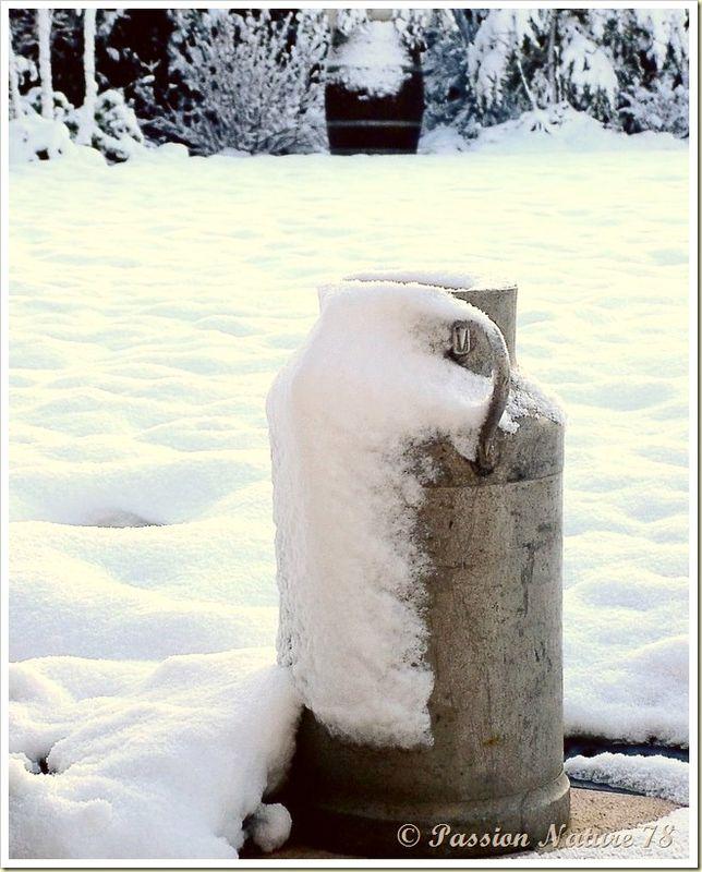Notre jardin en hiver (11)