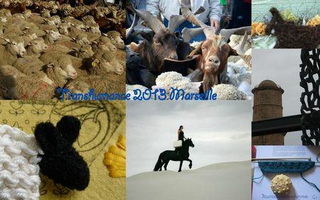 transhumance 2013