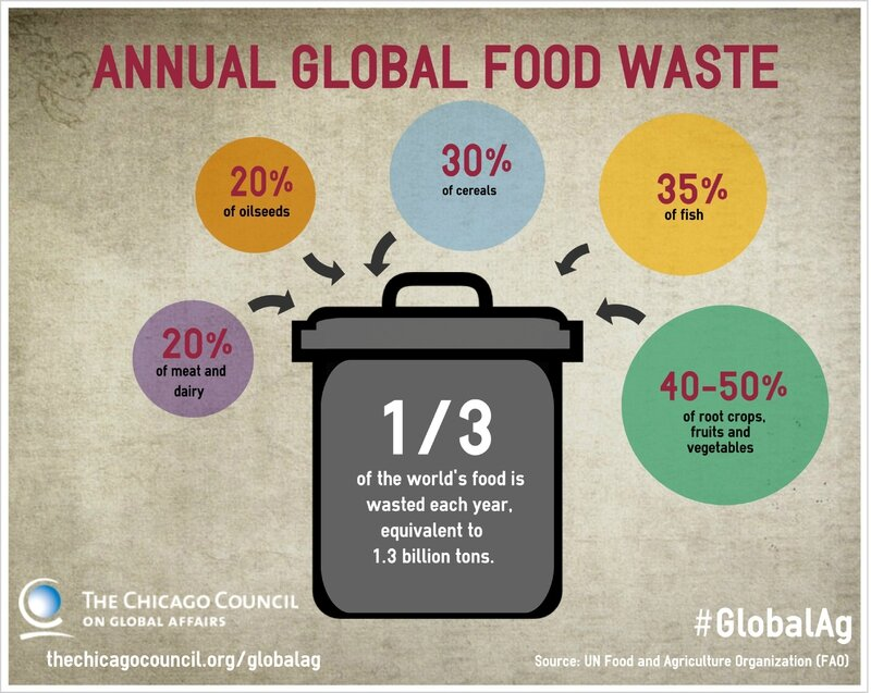 msu food waste investigation summary Food waste accounts for about 8% of global climate pollution, more than india or russia there are a lot of people who are hungry and malnourished, including in the us.