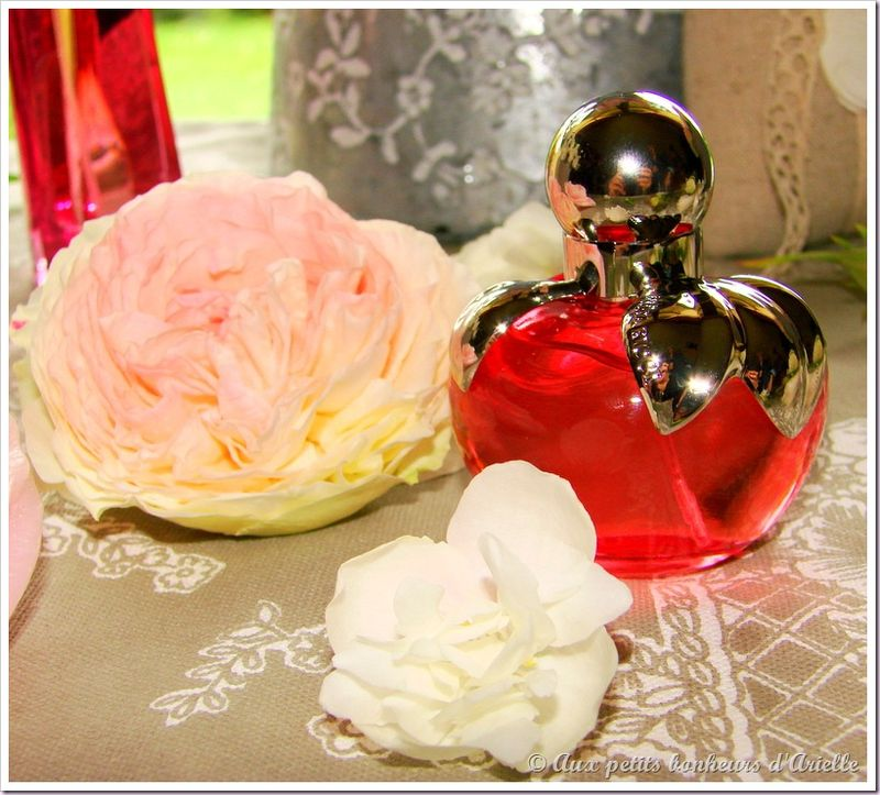 Roses, pivoines et seringat (6)