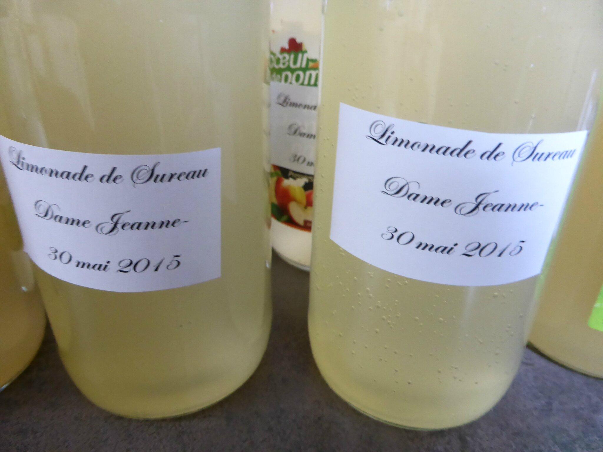 30-limonade de sureau (5)