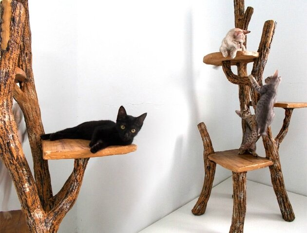 rustic-luxury-cat-trees
