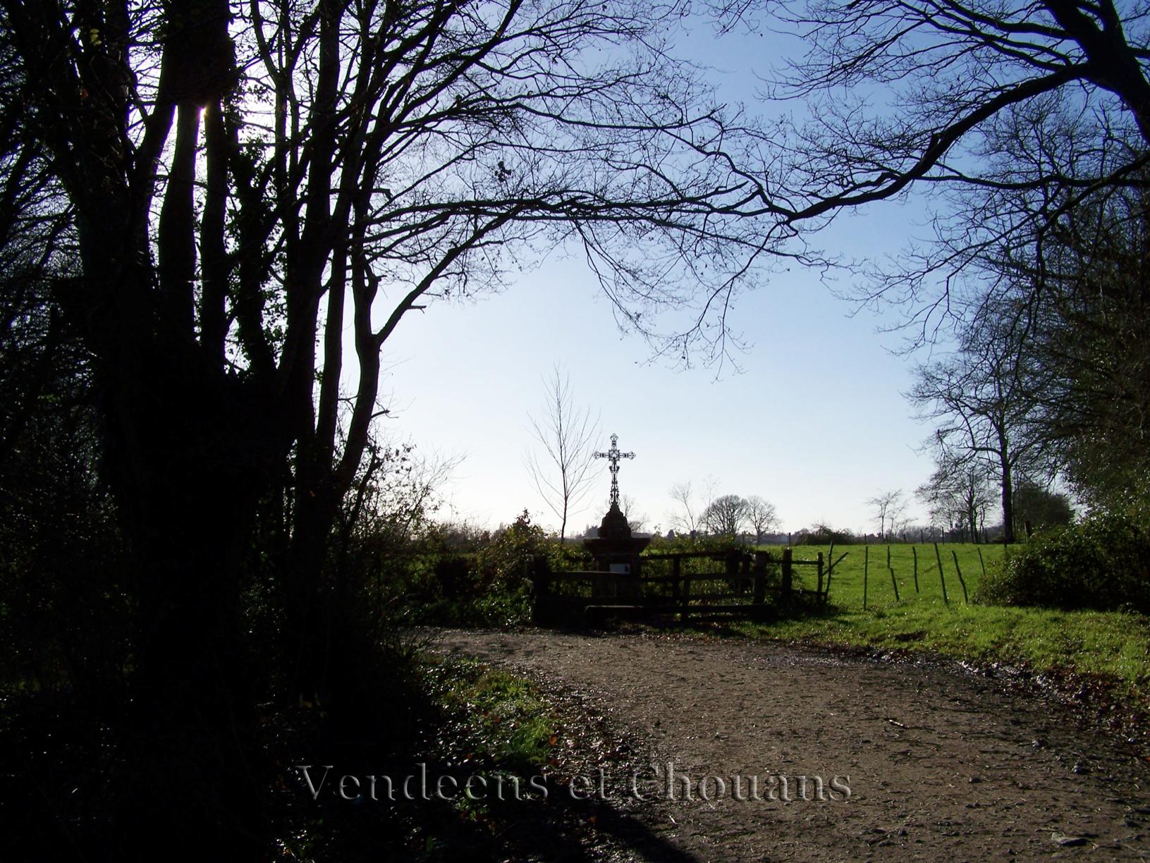 Sur le Chemin des Canons, de Bellefontaine à Andrezé (49)
