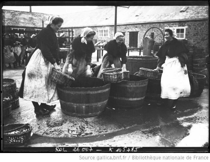 sardines-concarneau-histoire-images-L-kQ3MW3