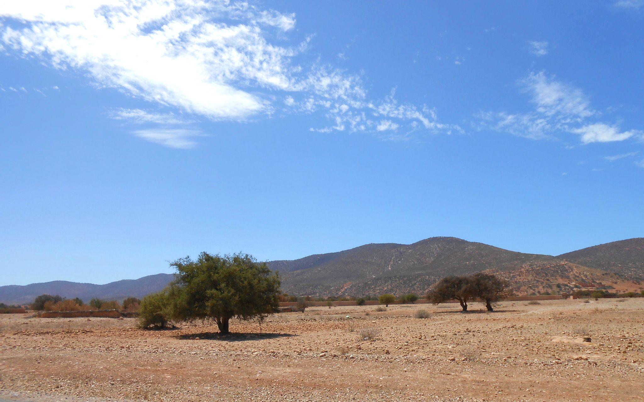 Montagne entre Tiznit et Bounaamane