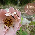 {little arrow ♥}