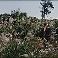 La légende de zatoichi (vol. 5) : voyage sans repos (zatôichi kenka-tabi) (1963) de kimiyoshi yasuda