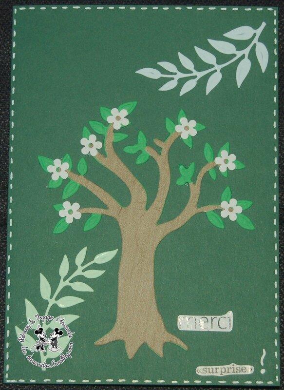 Carte (7)