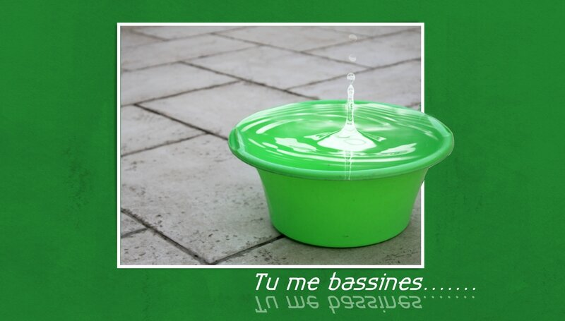BASSINE1