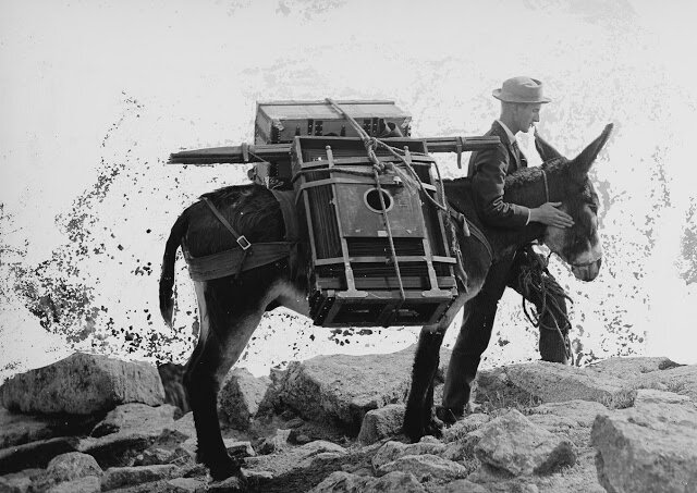 assistants-of-william-henry-jackson-mule-and-man