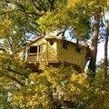 Cabane dans les arbres à auray