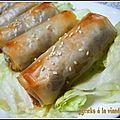 Bricks à la viande hachée (boureks)