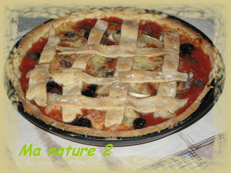 Crousti tarte aux tomates et aux anchois 001