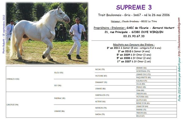 Supreme3