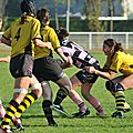 HORNETS_2011-10-16_RCP15_DOM_BIC_PICT0398