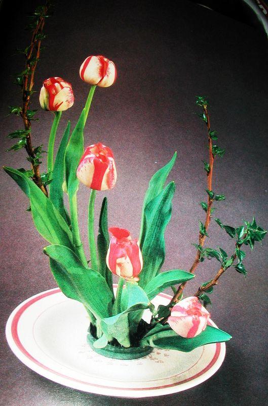 5 tulipes panachées