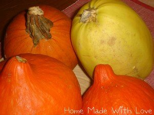 courge2