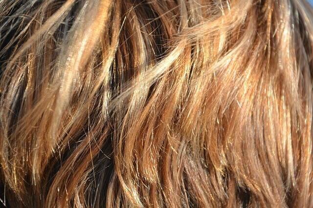 Lhuile des germes du blé pour les cheveux le concept
