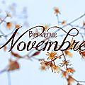 Open-Live-Writer/Novembre_E37A/novembre_001_thumb