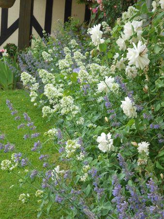 jardin et déco Lyne mai 2012 019