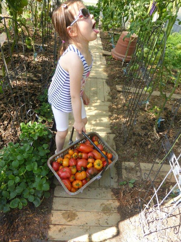 19-tomates (7)
