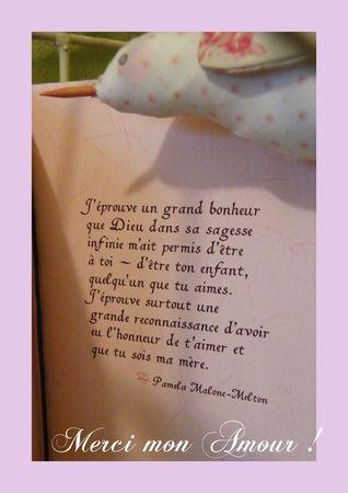 f_tes_des_m_res_2011_carte_3