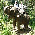 treck eleph P1190356