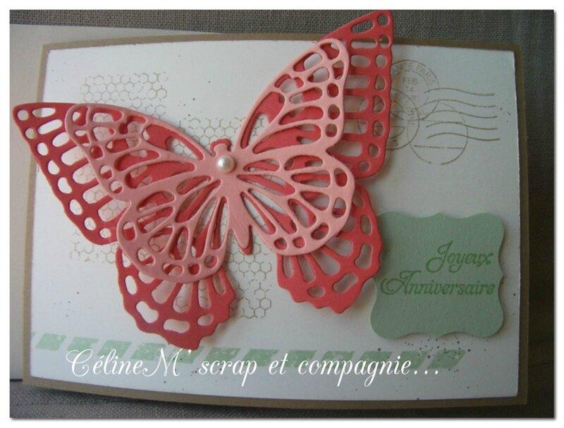 carte papillon corail 2