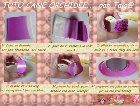TUTO_CANE_ORCHIDEE_PAGE_1_1