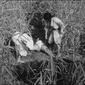 Onibaba (1964) de Kaneto Shind