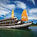 Guide et conseils pour les croisières de la baie d'halong