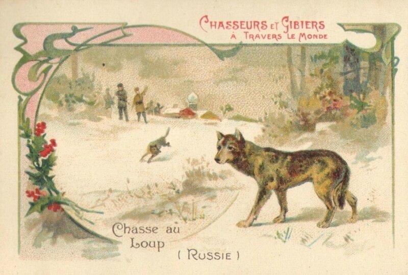 CPA Loup de Russie