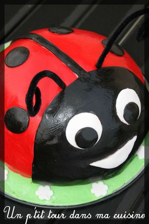 Coccinelle