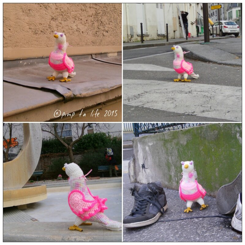 ®pimp ta life 2015 pigeonss