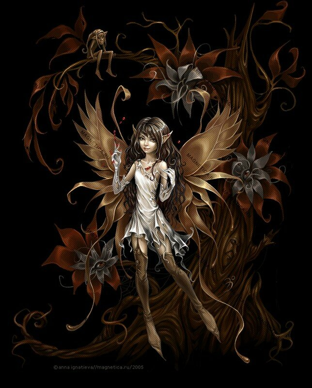 zakuro_fairy