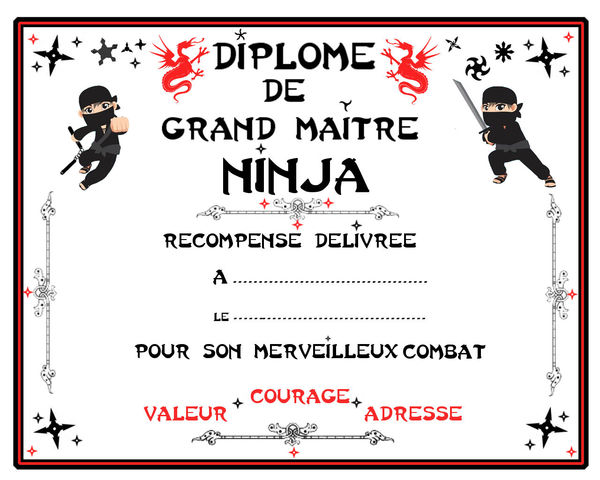 diplome_de_MAITRE_NINJA