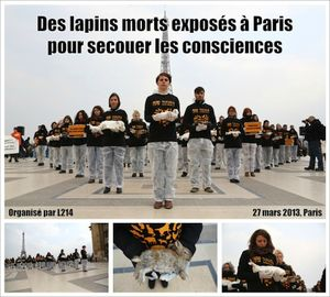 20130327-lapins-morts-paris