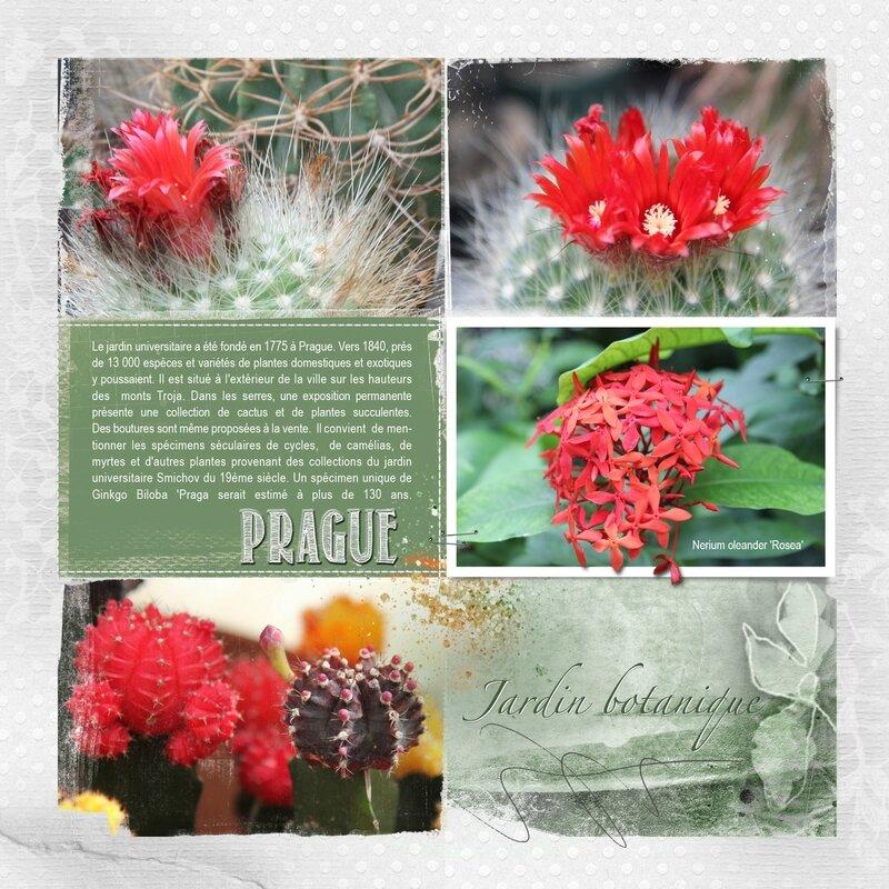 Prague-Jardin botanique -AASPN_FotoInspiredTemplatePack2C_3