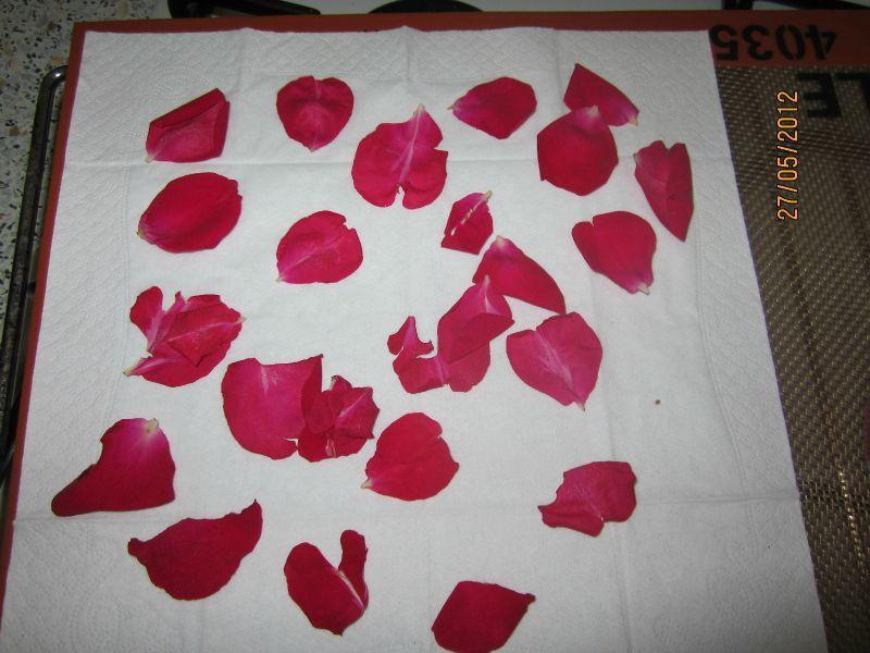 P tale de rose s ch es du fils et une aiguille - Petales de roses sechees ...
