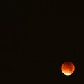 Blood moon *