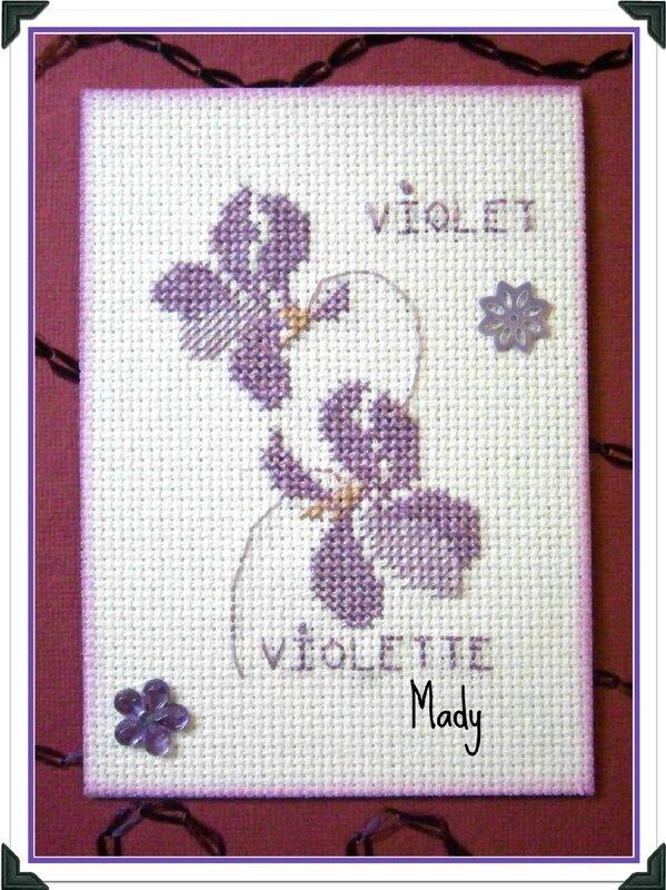 413 Violet pour Tortue