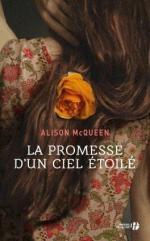 la-promesse-d-un-ciel-etoile-872620-264-432